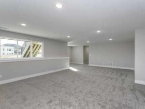 3905-estancia-basement